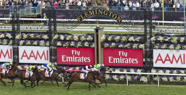 The Melbourne Cup is just hours away