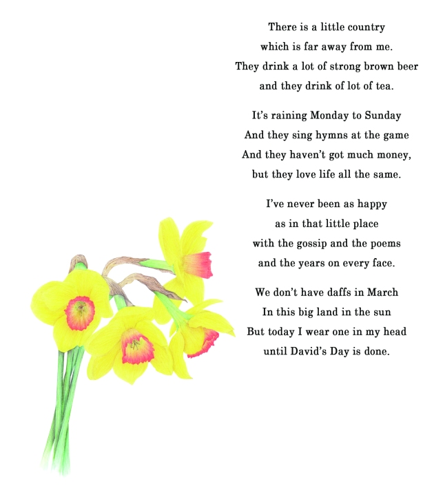 St David's Day poem