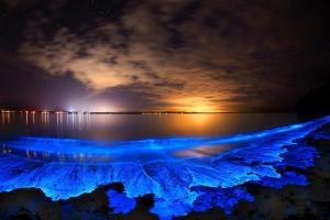 Natural luminescence, Jervis Bay, NSW