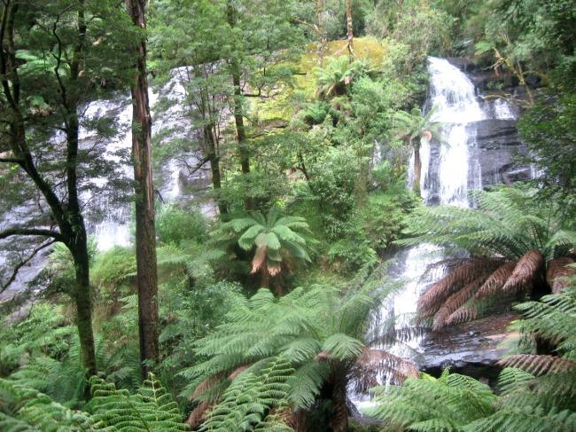 Otway waterfall