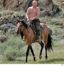 putinshirtless
