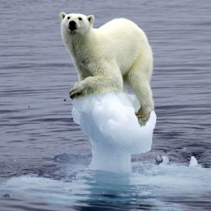 A rise of two degrees will not be catastrophic, but polar bears will become extinct.