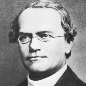Gregor Mendel was the founder of the science of genetics.