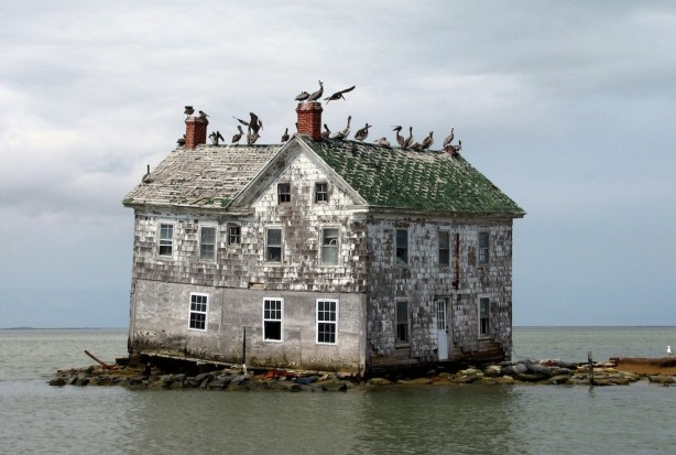 Holland Island, Chesapeake Bay, USA