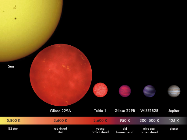 Relative star sizes and photospheric temperatures. Any planet around a red dwarf, such as the one shown here (Gliese 229A), would have to huddle close to achieve Earth-like temperatures, which would change their habitability, probably inducing tidal lock, for example. Credit: MPIA/V. Joergens.